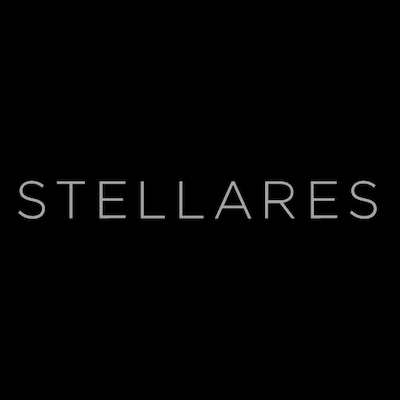 Photo of a review of STELLARES as a tech job search tool