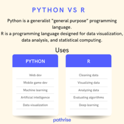 Photo of Python vs R